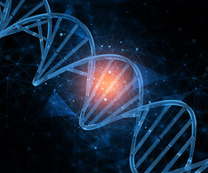 Image from Licence Details: A method for single restriction enzyme-based scarless DNA cloning