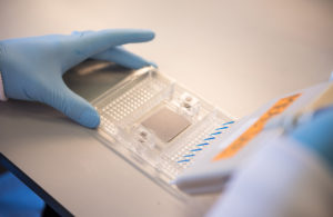 Image from Cancer vaccine firm Oxford Vacmedix closes $12.5m Series A funding News Article