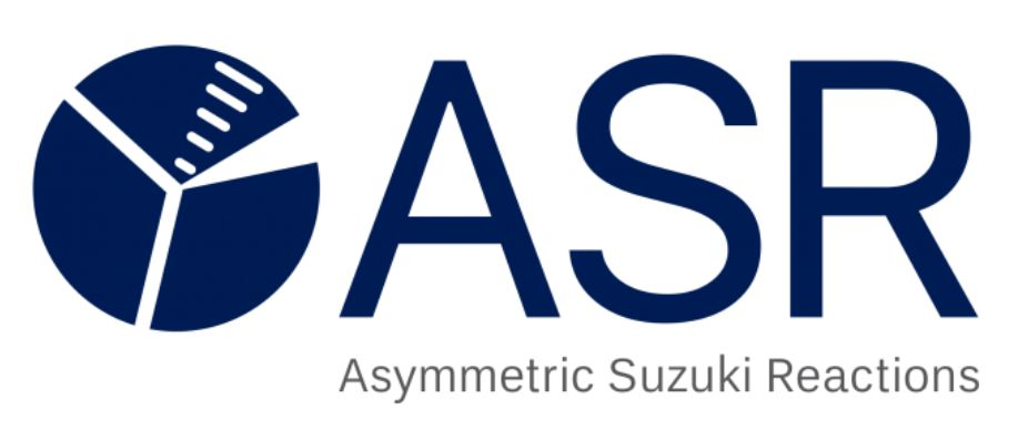Asymmetric Suzuki Reactions logo